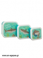 Lunch Boxes Shelby The Shark